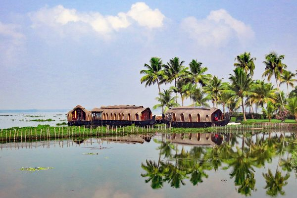 Three House Boats rest below palm trees on the banks of Kumarakom Lake, Kerala, South India